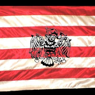 Árpád-sávos zászló hímzett turullal