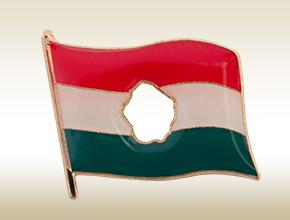 56-s zászló jelvény